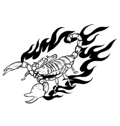 This scorpion with fire design vector