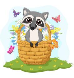 cartoon funny raccoon in basket vector image