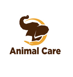 elephant care logo designs solutions and modern vector image