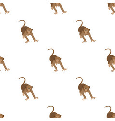Monkey wild animal of the jungle monkey mammal vector