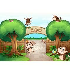 Monkeys in zoo vector image