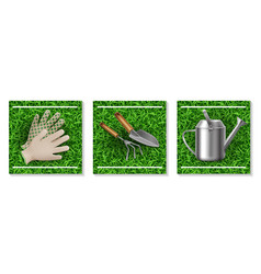 realistic gardening and seeding elements set vector image