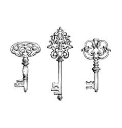 Old vintage key skeletons set vector image