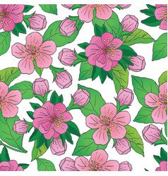 apple blossom seamless pattern vector image vector image
