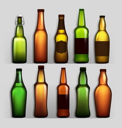 beer bottles set different empty glass for vector image