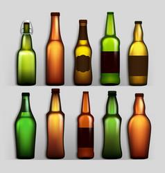 beer bottles set different empty glass for vector image