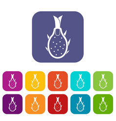Dragon fruit icons set vector