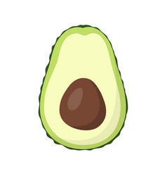 half avocado isolated on white background vector image