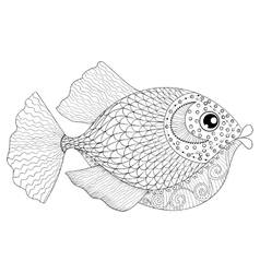 Hand drawn zentangle Fish for adult anti stress vector image