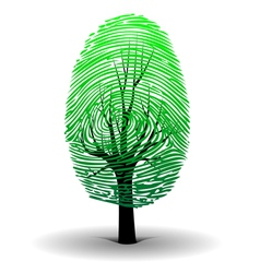 Fingerprint tree vector image vector image