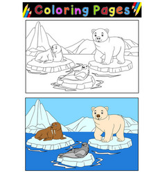 Arctic animals for coloring book vector