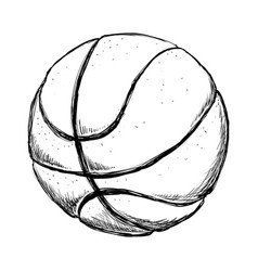 Basketball ball equipment vector