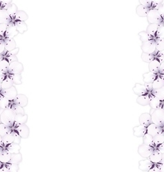 Frame template blooming sakura blue flowers vector