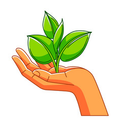 Hand holding sprout with leaves vector