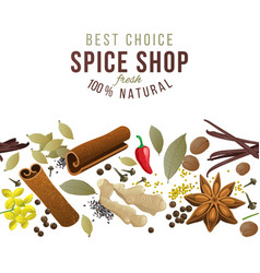seamless border with spices vector image