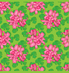 seamless pattern of monstera leaves with pink vector image