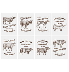 Vintage cards farm cattle bulls and cows vector