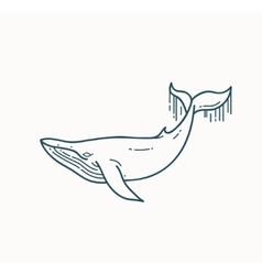 Whale linear vector image