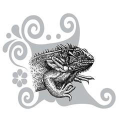 Iguana drawing vector image vector image