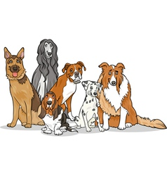 cute purebred dogs group cartoon vector image