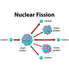 Diagram showing nuclear fission vector