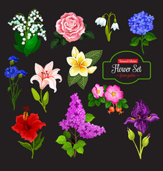 Flower icon of garden and tropical flowering plant vector