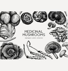 Medicinal mushroom background hand-sketched adapt vector