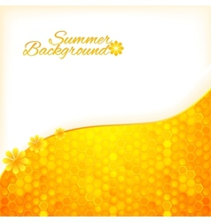 Abstract summer background with honey vector image vector image
