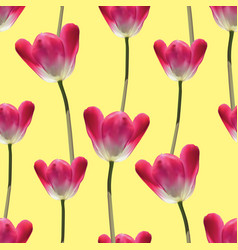 realistic tulips seamless pattern vector image
