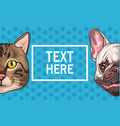 Cat and dog animals domestic heads characters vector