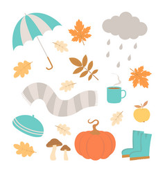 cute set with autumn elements vector image