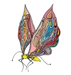 decorative insect butterfly vector image