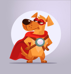 Dog superhero character in mask vector