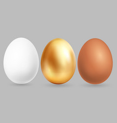 three realistic eggs isolated on grey background vector image