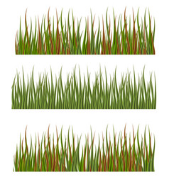 green grass borders set nature lawn meadow spring vector image