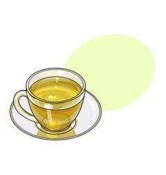 hand drawn glass cup mug of green tea drink vector image vector image