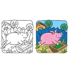 Little pig coloring book vector image vector image