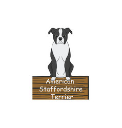 American staffordshire terrier cartoon dog icon vector