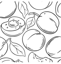 Apricot fruit pattern on white background vector