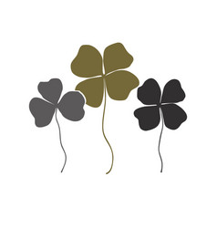 clovers with four and three leaves bouquet vector image