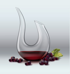Decanter and grape vector