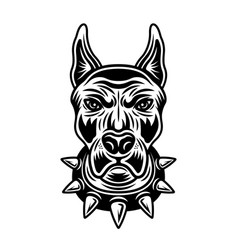 Dog head in spiked collar front view vector