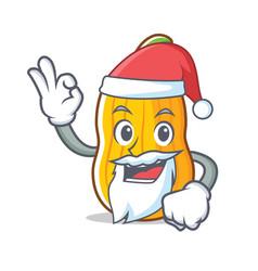 Santa butternut squash mascot cartoon vector