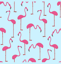 seamless pattern with hand drawn flamingo vector image