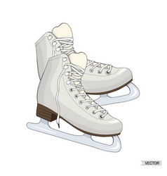 skates isolated on white background vector image