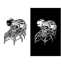 spider skull vector image