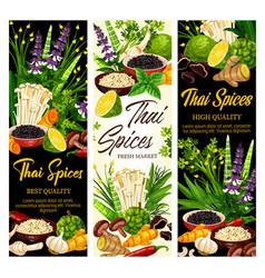 thai spices and herbs farm market seasonings vector image