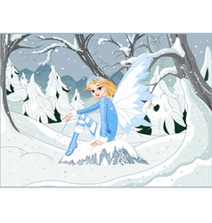 Winter Fairy vector image