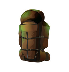 big brown rucksack vector image