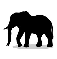 elephant mammal black silhouette animal vector image